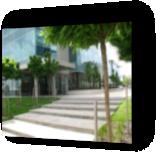 Suburban Office Park